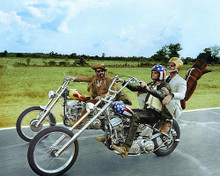 This is an image of 281763 Easy Rider Photograph & Poster