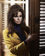 This is an image of 281911 Raquel Welch Photograph & Poster