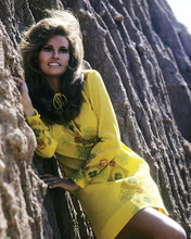 This is an image of 281928 Raquel Welch Photograph & Poster