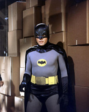 This is an image of 282065 Batman Photograph & Poster