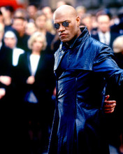This is an image of 236706 Laurence Fishburne Photograph & Poster