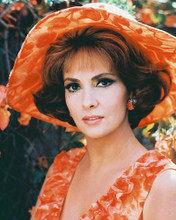 This is an image of 213347 Gina Lollobrigida Photograph & Poster