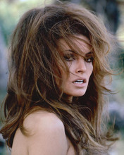 This is an image of 216300 Raquel Welch Photograph & Poster