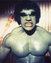 This is an image of 220588 The Incredible Hulk Photograph & Poster