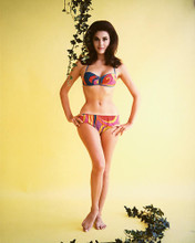 This is an image of 222148 Linda Harrison Photograph & Poster