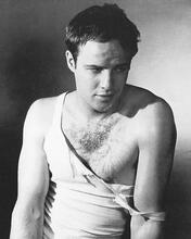 This is an image of 168140 Marlon Brando Photograph & Poster