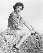 This is an image of 169558 Hazel Court Photograph & Poster