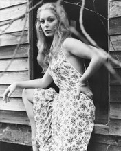 This is an image of 169706 Jenny Hanley Photograph & Poster