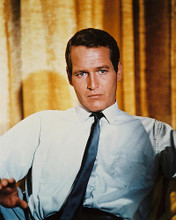 This is an image of 211121 Paul Newman Photograph & Poster