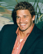 This is an image of 248019 David Boreanaz Photograph & Poster