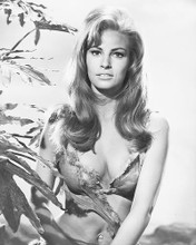 This is an image of 171155 Raquel Welch Photograph & Poster