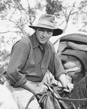 This is an image of 171265 Robert Mitchum Photograph & Poster