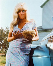 This is an image of 227404 Joy Harmon Photograph & Poster