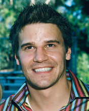 This is an image of 249007 David Boreanaz Photograph & Poster