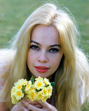 This is an image of 249708 Leslie Caron Photograph & Poster
