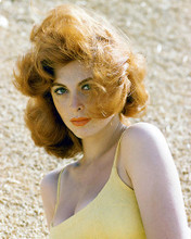 This is an image of 249870 Tina Louise Photograph & Poster