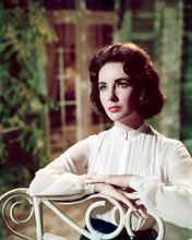 This is an image of 250009 Elizabeth Taylor Photograph & Poster