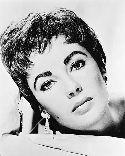This is an image of 167779 Elizabeth Taylor Photograph & Poster