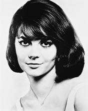 This is an image of 167787 Natalie Wood Photograph & Poster