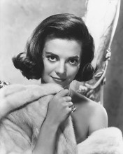 This is an image of 172065 Natalie Wood Photograph & Poster