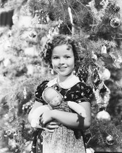 This is an image of 172207 Shirley Temple Photograph & Poster