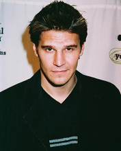 This is an image of 238306 David Boreanaz Photograph & Poster