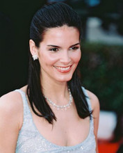This is an image of 241570 Angie Harmon Photograph & Poster