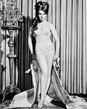 This is an image of 170344 Ann-Margret Photograph & Poster