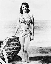 This is an image of 170545 Ava Gardner Photograph & Poster