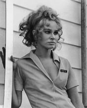 This is an image of 173102 Karen Black Photograph & Poster