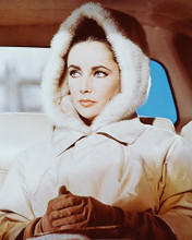 This is an image of 243493 Elizabeth Taylor Photograph & Poster