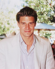 This is an image of 244753 David Boreanaz Photograph & Poster