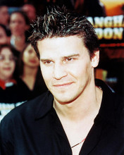 This is an image of 244754 David Boreanaz Photograph & Poster