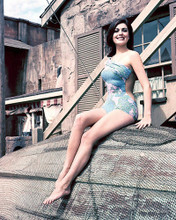 This is an image of 256743 Linda Harrison Photograph & Poster