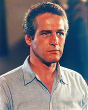 This is an image of 258007 Paul Newman Photograph & Poster