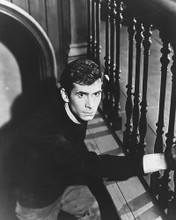 This is an image of 174520 Anthony Perkins Photograph & Poster