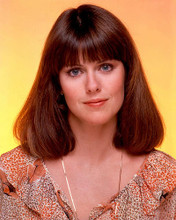 This is an image of 257108 Pam Dawber Photograph & Poster