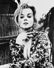 This is an image of 171078 Ann-Margret Photograph & Poster