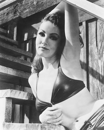 This is an image of 173569 Julie Newmar Photograph & Poster