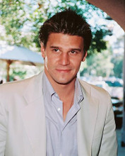 This is an image of 251534 David Boreanaz Photograph & Poster
