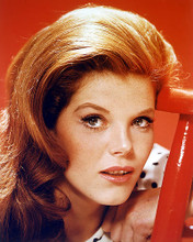 This is an image of 257845 Samantha Eggar Photograph & Poster