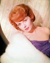 This is an image of 262725 Jeanne Crain Photograph & Poster