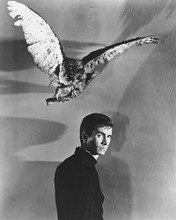 This is an image of 174049 Anthony Perkins Photograph & Poster