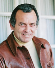 This is an image of 253058 David Janssen Photograph & Poster