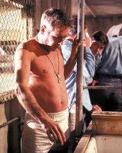 This is an image of 259109 Paul Newman Photograph & Poster