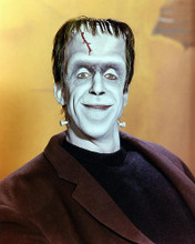 This is an image of 259422 Fred Gwynne Photograph & Poster