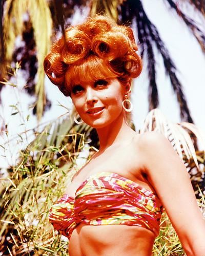 This is an image of 259511 Tina Louise Photograph & Poster