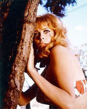 This is an image of 259727 Monica Vitti Photograph & Poster