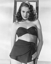 This is an image of 174796 Hazel Court Photograph & Poster