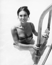 This is an image of 175456 Daliah Lavi Photograph & Poster